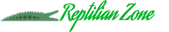 Everything about Reptiles